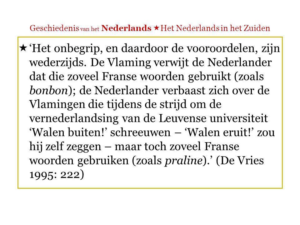 Geschiedenis van het Nederlands  Het Nederlands in het Zuiden  'Nederland en Vlaanderen zijn kinderen uit hetzelfde gezin, die gescheiden zijn opgegroeid.