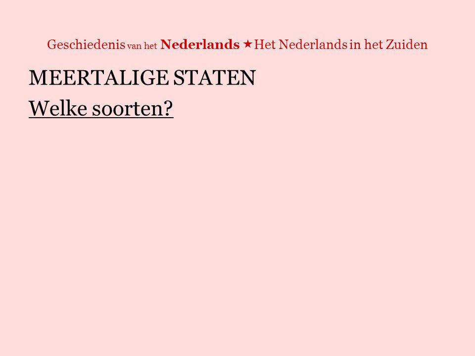 Geschiedenis van het Nederlands  Het Nederlands in het Zuiden MEERTALIGE STATEN Welke soorten.