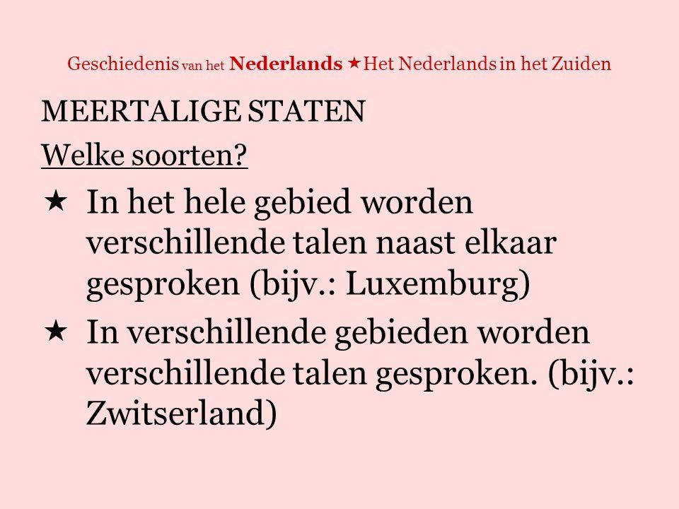 Geschiedenis van het Nederlands  Het Nederlands in het Zuiden MEERTALIGE STATEN Twee manieren om deze staten te besturen:  Personalitietsprincipe: de regering richt zich tot sprekers van taal x en y resp.