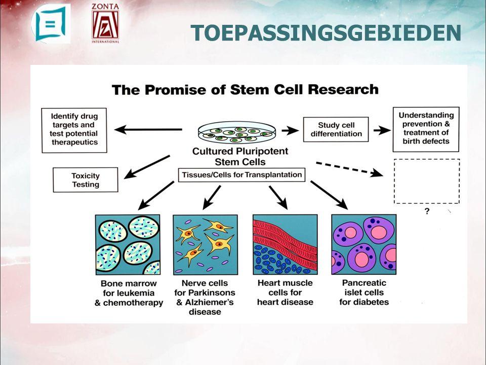  Celfunctieonderzoek model voor studie van groei differentiatie model voor studie van ziektebeeld genetisch Kanker  Verbeteren van voedingsbodems RESEARCH