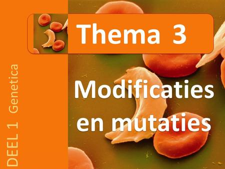 DEEL 1 Genetica Modificaties en mutaties Thema 3.