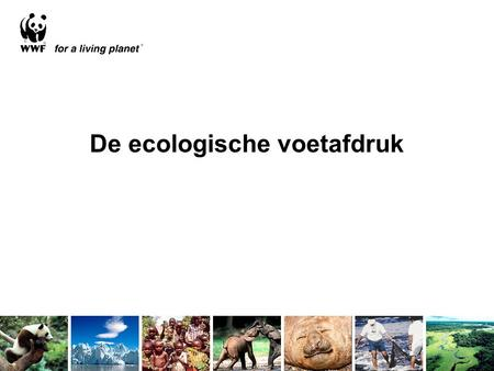 De ecologische voetafdruk. Footprint components Fossil Fuel Built-up Waste Food Fibres absorption.