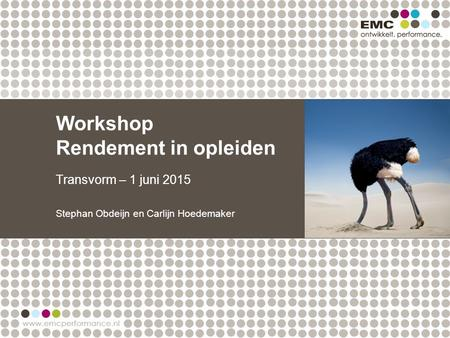 Workshop Rendement in opleiden Transvorm – 1 juni 2015 Stephan Obdeijn en Carlijn Hoedemaker.