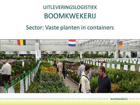 UITLEVERINGSLOGISTIEK BOOMKWEKERIJ Sector: Vaste planten in containers.