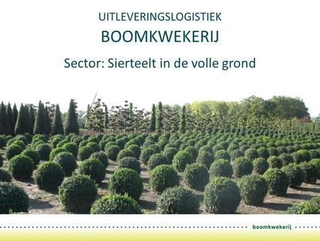 UITLEVERINGSLOGISTIEK BOOMKWEKERIJ Sector: Sierteelt in de volle grond.
