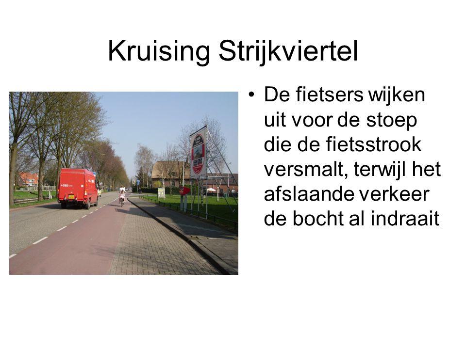 Het drukke stuk tussen Strijkviertel en Stadsdam Het strookje wordt ineens veel smaller bij de knotbomen.