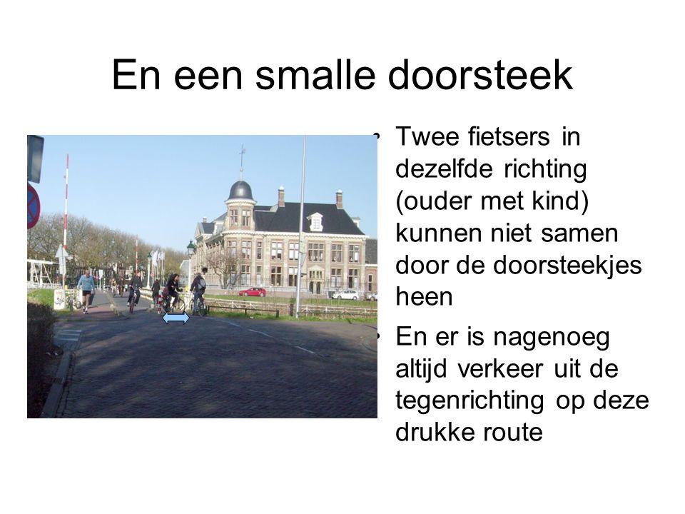 Samenvatting Leidseweg Rood asfalteren, inrichten als fietsstraat Doorsteekjes voldoende breed maken voor 2 fietsers uit beide richtingen tegelijk, desnoods met 3 paaltjes in de doorsteek (telkens een tussenruimte van 1,75 meter) Het middelste paaltje moet hoger zijn, bijvoorbeeld het bord fietspad