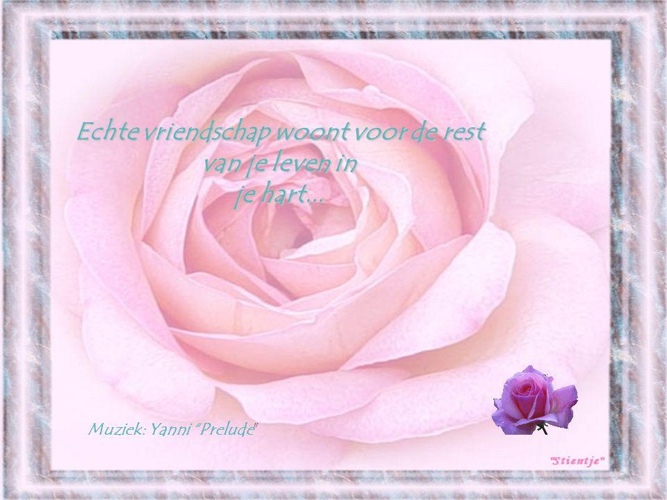 Echte vriendschap woont voor de rest van je leven in je hart... Muziek: Yanni Prelude