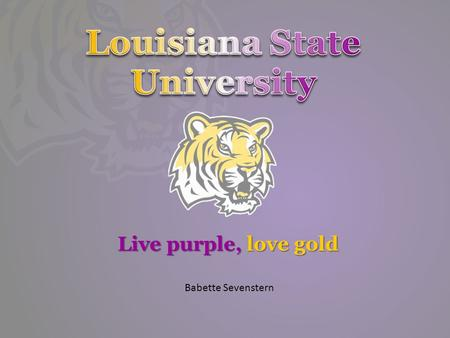 Live purple, love gold Babette Sevenstern. USA  /best-colleges/rankings/national-universities.