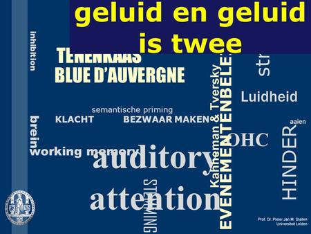 TENENKAAS BLUE D'AUVERGNE OHC auditory attention semantische priming KLACHT BEZWAAR MAKEN HINDER inhibition brein working memory stress Luidheid aaien.