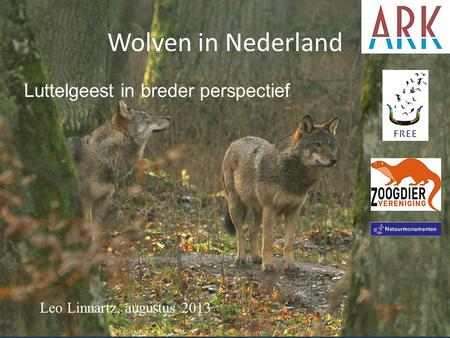 Wolven in Nederland Luttelgeest in breder perspectief
