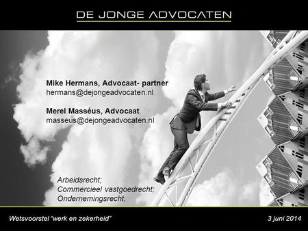 Mike Hermans, Advocaat- partner