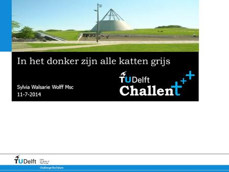11-7-2014 Challenge the future Delft University of Technology In het donker zijn alle katten grijs Sylvia Walsarie Wolff Msc.