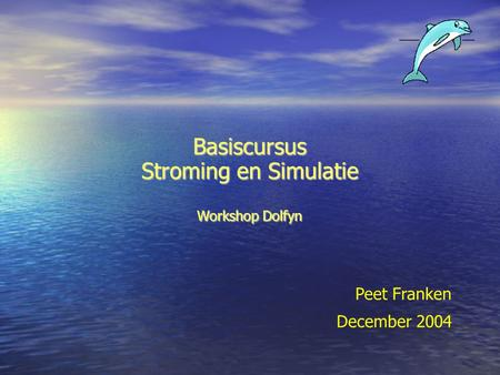Basiscursus Stroming en Simulatie Workshop Dolfyn Peet Franken December 2004.