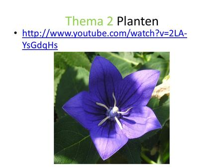 Thema 2 Planten http://www.youtube.com/watch?v=2LA-YsGdqHs.