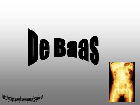 De Baas http://groups.google.com/group/grapjes-cs.
