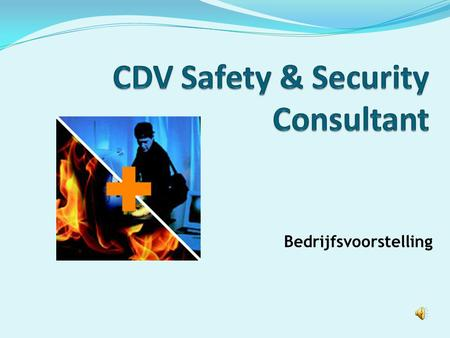 CDV Safety & Security Consultant
