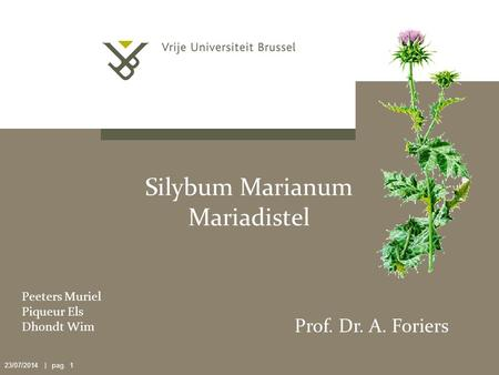 23/07/2014 | pag. 1 Silybum Marianum Mariadistel Peeters Muriel Piqueur Els Dhondt Wim Prof. Dr. A. Foriers.