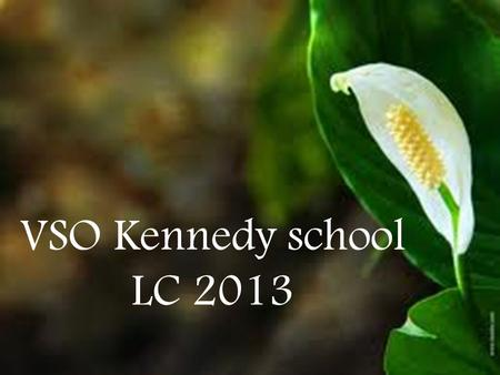 VSO Kennedy school LC 2013.