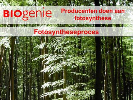 Producenten doen aan fotosynthese Fotosyntheseproces.