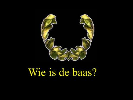 Wie is de baas?.