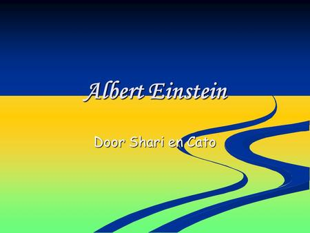 Albert Einstein Door Shari en Cato.