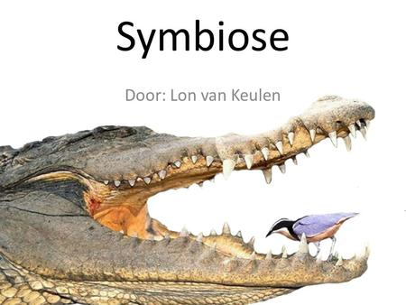 Symbiose Door: Lon van Keulen. Wat is symbiose? Mutualisme