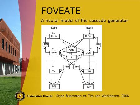 FOVEATE Arjen Buschman en Tim van Werkhoven, 2006 A neural model of the saccade generator.