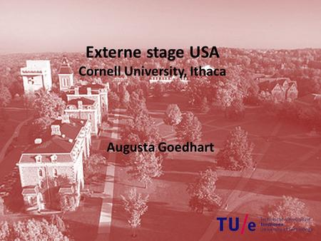 Externe stage USA Cornell University, Ithaca Augusta Goedhart.
