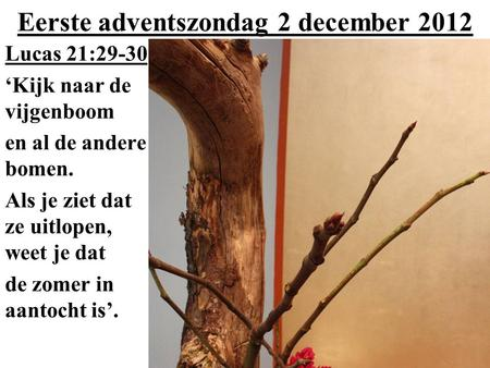 Eerste adventszondag 2 december 2012