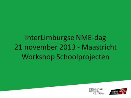 InterLimburgse NME-dag 21 november 2013 - Maastricht Workshop Schoolprojecten.