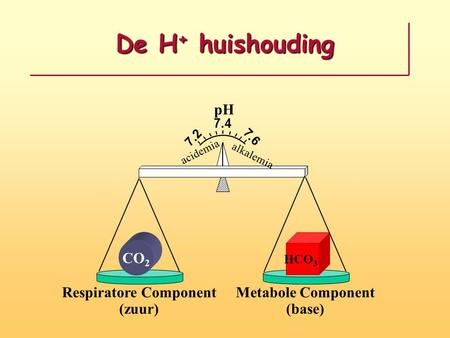 De H + huishouding pH 7.2 7.6 7.4 CO 2 HCO 3 - Respiratore Component (zuur) Metabole Component (base) acidemia alkalemia.
