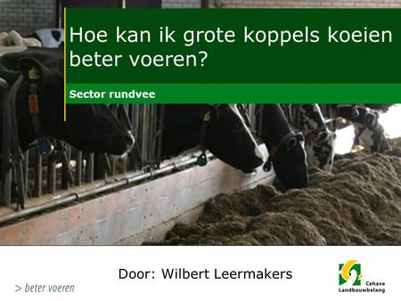 Door: Wilbert Leermakers