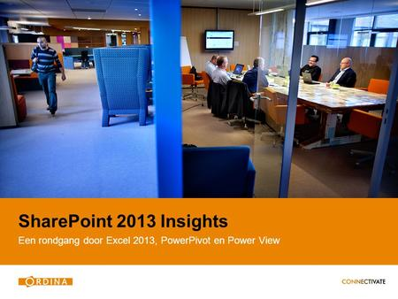 SharePoint 2013 Insights Een rondgang door Excel 2013, PowerPivot en Power View.