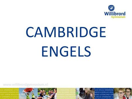 CAMBRIDGE ENGELS.