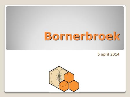 Bornerbroek 5 april 2014.