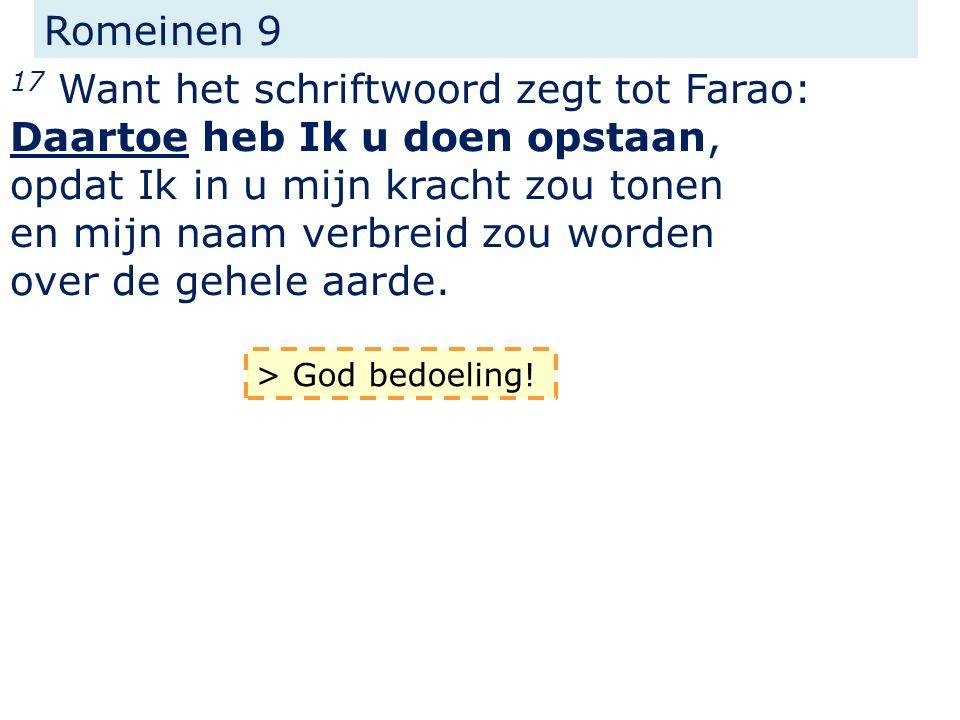 Efeze 1 11...naar het voornemen van Hem, die in alles werkt naar de raad van zijn wil...