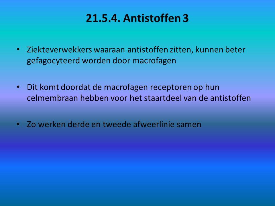 21.5.4. Antistoffen 4 schematische weergave