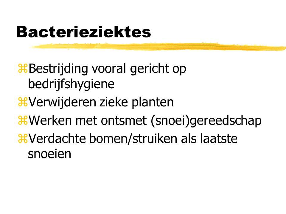 aaltjes z Rondwormen of nematoden z symptomen: yAchterblijven in groei yMisvorming, ybladvlekken, ybaardig wortelstelsel yRotting bollen en knollen