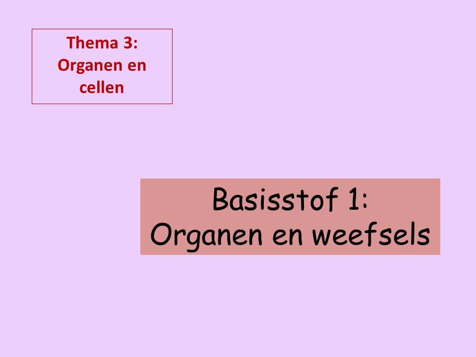 Basisstof 1: Organen en weefsels