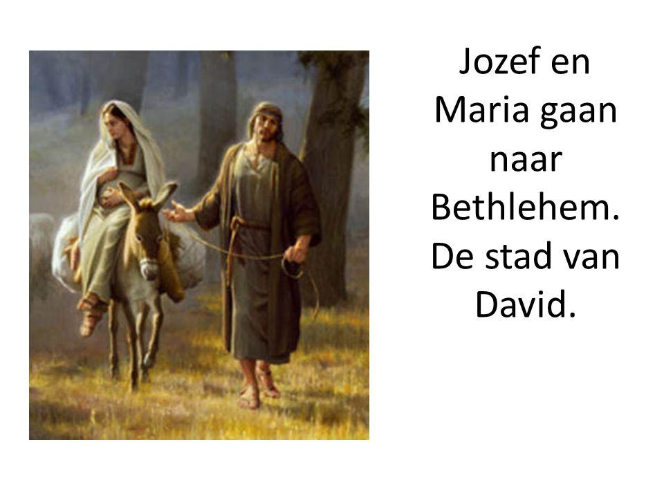 Jozef en Maria gaan naar Bethlehem. De stad van David.