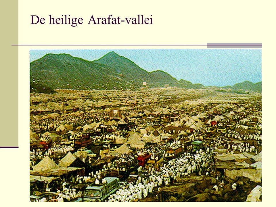 De heilige Arafat-vallei