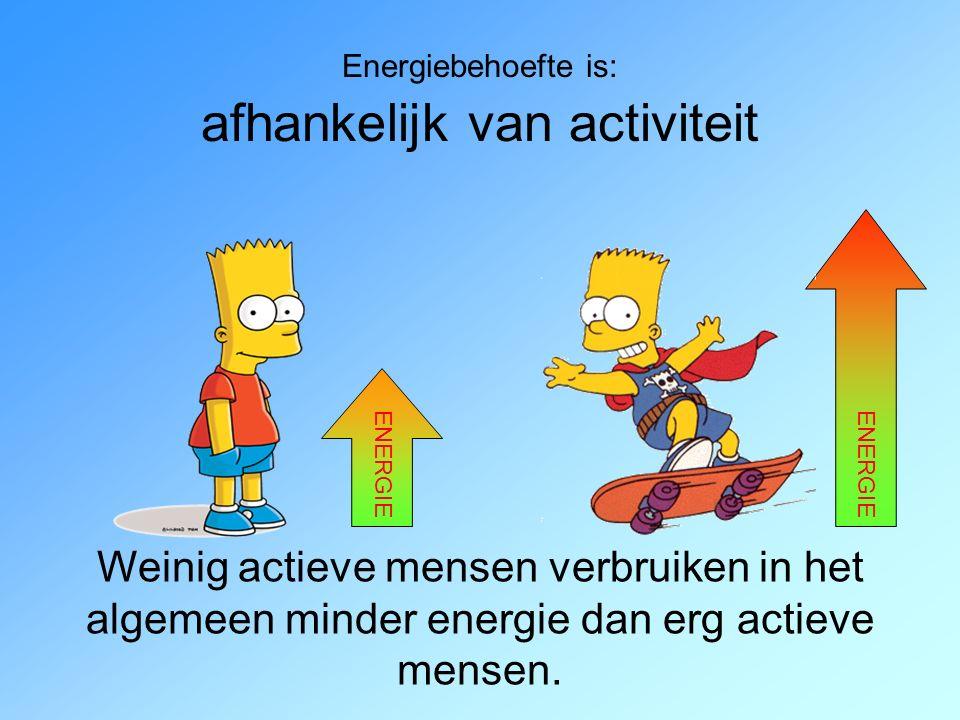 Energiebehoefte is: afhankelijk van activiteit