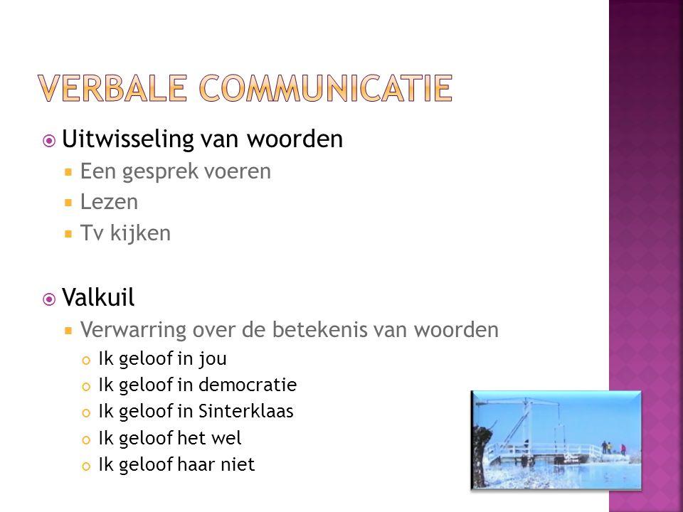 Verbale communicatie Uitwisseling van woorden Valkuil