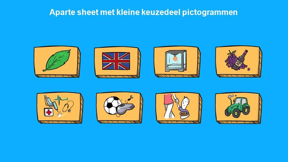 Aparte sheet met kleine keuzedeel pictogrammen