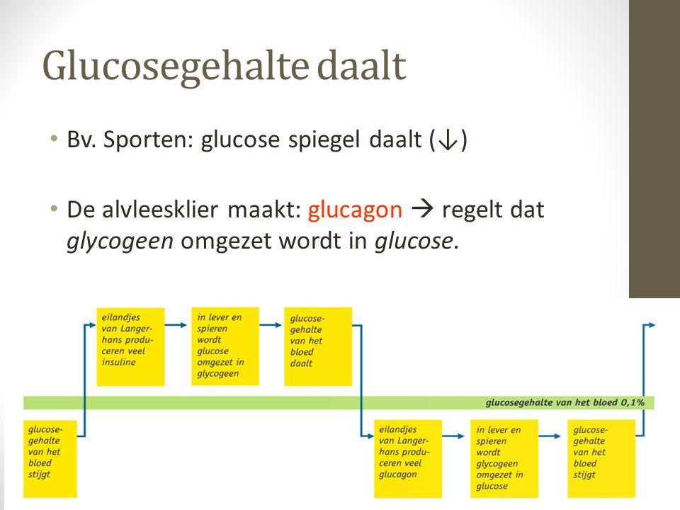 Glucosegehalte daalt Bv. Sporten: glucose spiegel daalt (↓)
