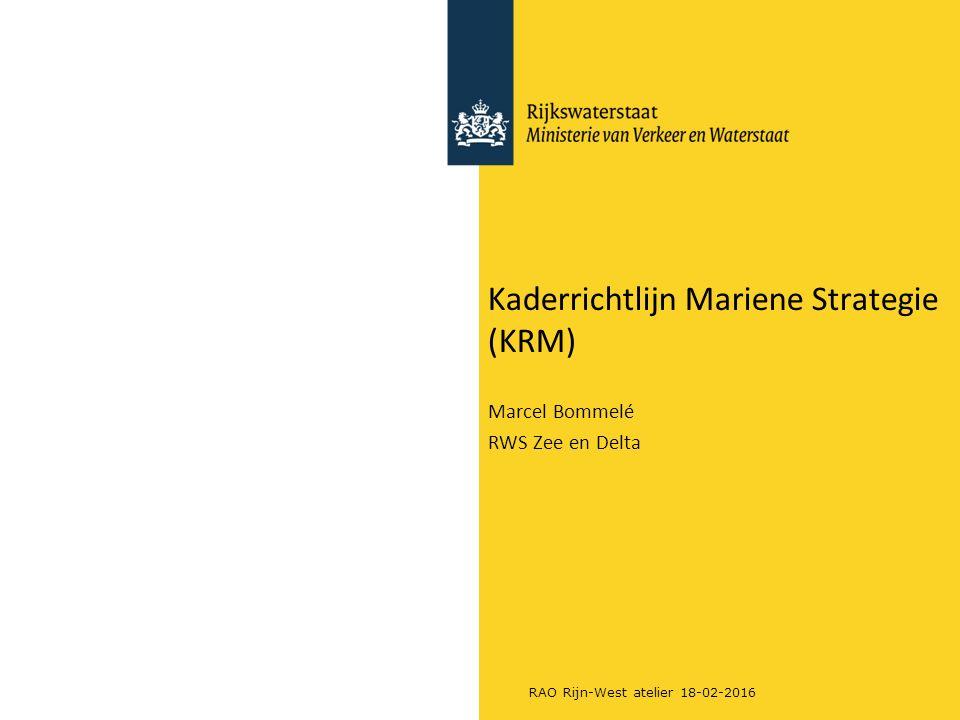 Kaderrichtlijn Mariene Strategie (KRM)