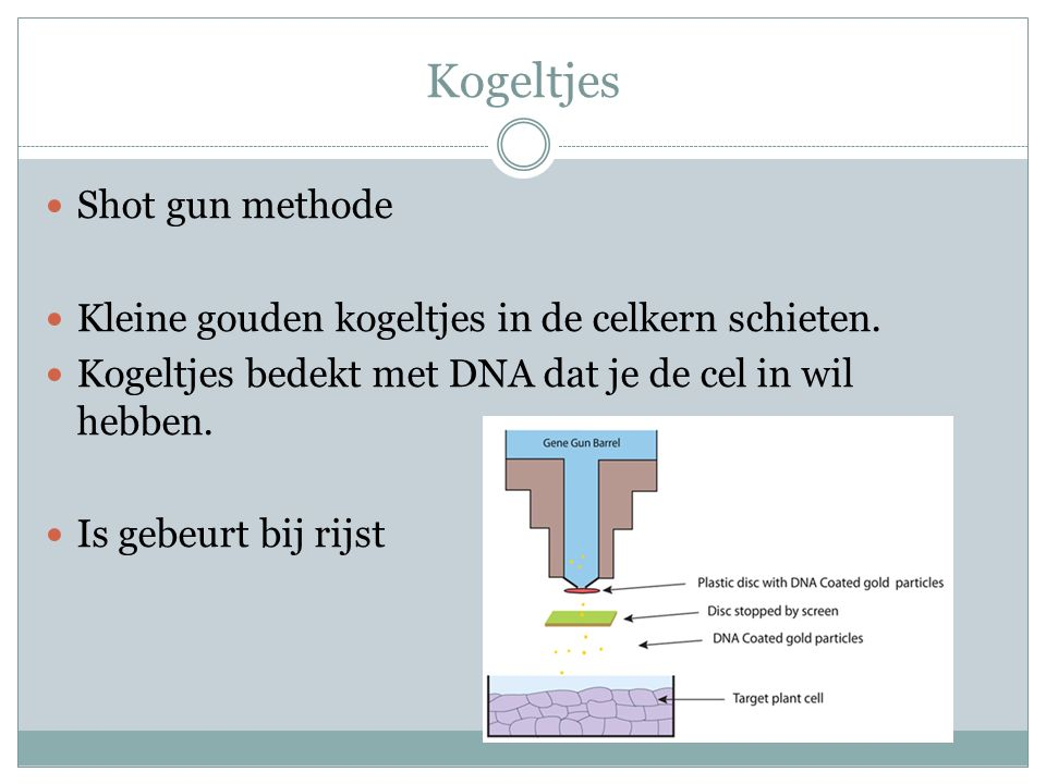 Kogeltjes Shot gun methode
