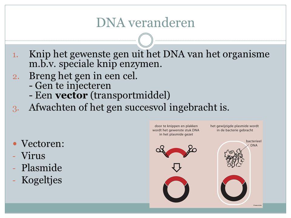 DNA veranderen Knip het gewenste gen uit het DNA van het organisme m.b.v. speciale knip enzymen.