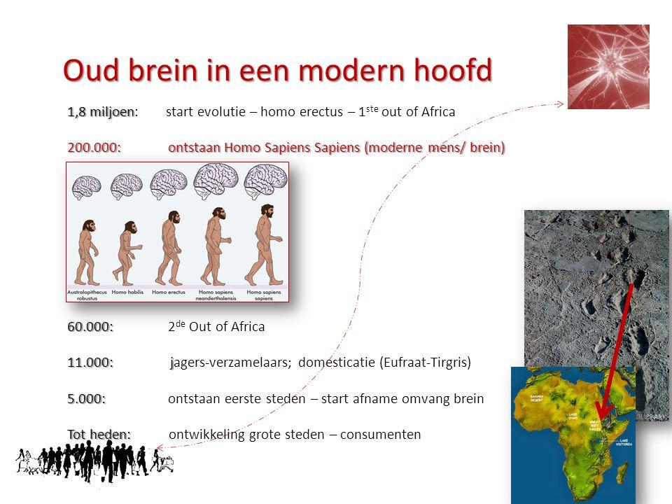 Oud brein in een modern hoofd